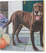Chelsea At The Door Wood Print by Sandra Chase