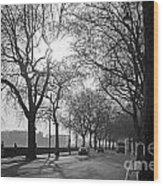 Chelsea Embankment London 2 Uk Wood Print
