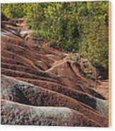 Mars On Earth - Cheltenham Badlands Ontario Canada Wood Print
