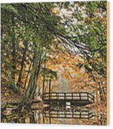 Chenango Valley State Park Wood Print by Christina Rollo