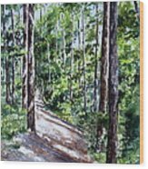Cheraw Trail Wood Print