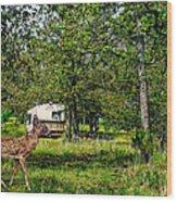 Cherokee Lake Thousand Trails Preserve Wood Print