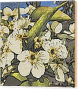 Cherry Blooms Wood Print