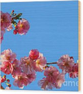 Cherry Blossom Against Blue Sky Wood Print