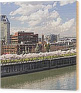Cherry Blossom Along Portland Oregon Waterfront Panorama Wood Print
