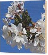 Cherry Blossom Blue Sky - 1 Wood Print