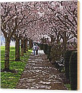 Cherry Blossom Friends Wood Print