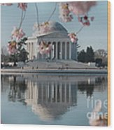 Cherry Blossoms And Jefferson Memorial Wood Print
