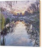 Cherry Blossom Lagoon Wood Print