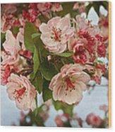 Cherry Blossom Pink Wood Print