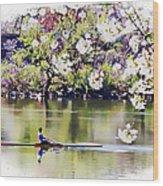Cherry Blossom Rower Wood Print