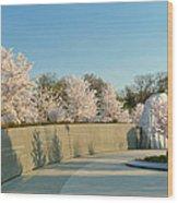 Cherry Blossoms 2013 - 022 Wood Print