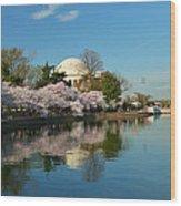 Cherry Blossoms 2013 - 041 Wood Print