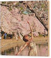 Cherry Blossoms 2013 - 077 Wood Print