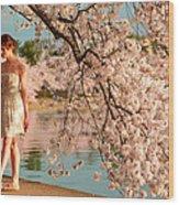 Cherry Blossoms 2013 - 079 Wood Print