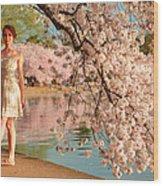 Cherry Blossoms 2013 - 080 Wood Print