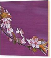 Cherry Blossoms And Plum Door Wood Print