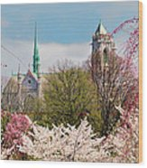 Cherry Blossoms And The Sacred Heart Wood Print