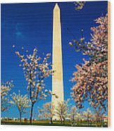Cherry Blossoms At The Monument Wood Print