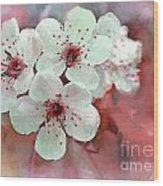 Apple Blossoms In Soft Pink - Digital Paint Wood Print