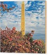 Cherry Blossoms In Washington Wood Print
