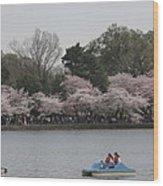 Cherry Blossoms - Washington Dc - 011315 Wood Print by DC Photographer