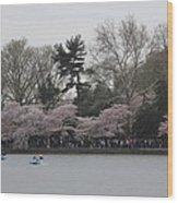 Cherry Blossoms - Washington Dc - 011317 Wood Print