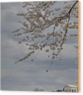 Cherry Blossoms With Jefferson Memorial - Washington Dc - 011312 Wood Print by DC Photographer