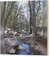 Cherry Creek Wood Print