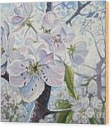 Cherry In Blossom Wood Print