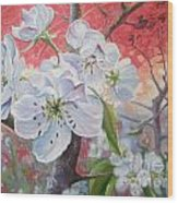 Cherry In Blossom Red Wood Print