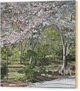 Cherry Lane Series  Picture A Wood Print