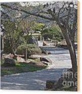 Cherry Lane Series  Picture C Wood Print