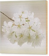 Cherry Tree Blossoms Wood Print by Sandy Keeton
