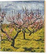 Cherry Trees 3.0 Wood Print