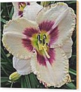 Cherryberry Daylily Wood Print