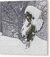 Cherub Of The Blizzard Wood Print by Teak  Bird