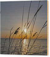 Chesapeak Bay At Sunrise Wood Print