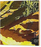 Chestnut Abstract Wood Print