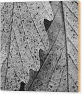 Chestnut Oak Leaves Wood Print