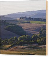 Chianti Hills In Tuscany Wood Print by Mathew Lodge