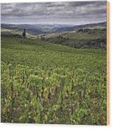 Chianti Region Of Tuscany Wood Print