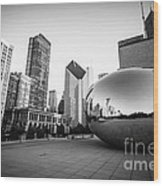 Chicago Bean And Chicago Skyline In Black And White Wood Print