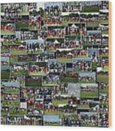 Chicago Bears Training Camp 2014 Collage The Players Wood Print