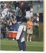 Chicago Bears Wr Armanti Edwards Training Camp 2014 02 Wood Print