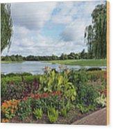Chicago Botanical Gardens - 95 Wood Print by Ely Arsha