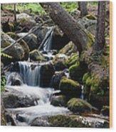 Chicago Creek #2 Wood Print