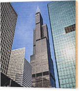 Chicago Downtown City Buildings With Willis-sears Tower Wood Print