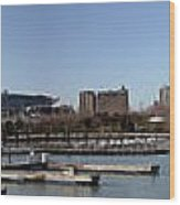 Chicago Lakefront - Soldier Field To Willis Tower Wood Print by David Bearden