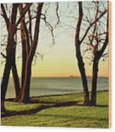 Chicago Lakefront Trail And Lincoln Wood Print